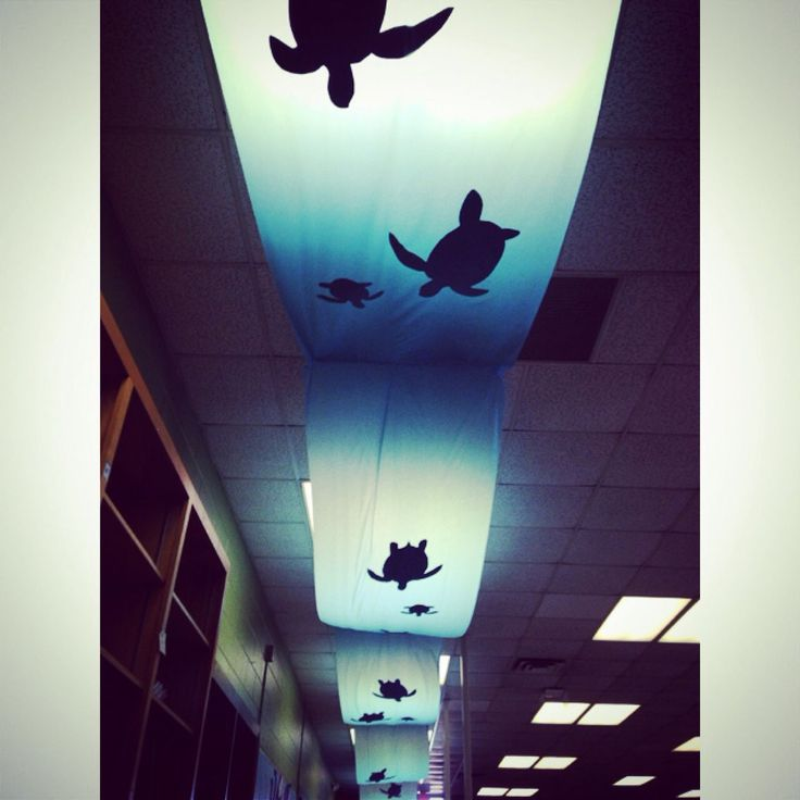 Sea turtle ceiling decoration using table cloths and paper cut out turtles. Back lit by ceiling lights. Perfect for under the sea themed events