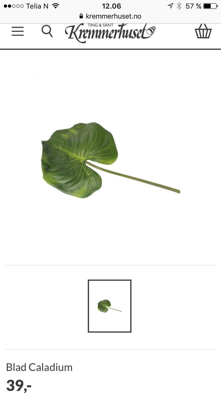 Falsk grønt