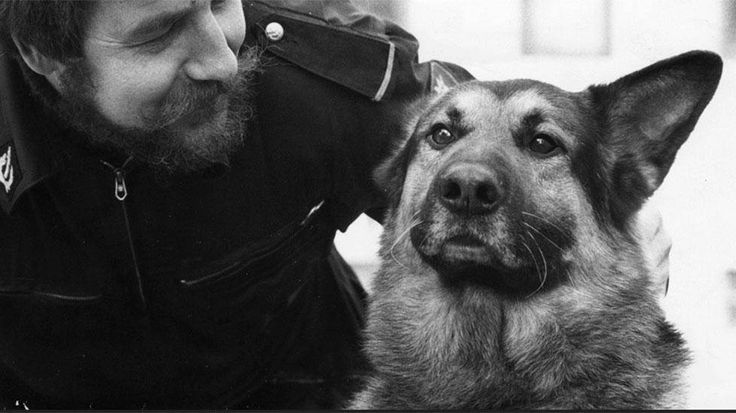 Espoon poliisissa 1970-luvun alussa palvellut poliisikoira Lex on yksi Suomen poliisikoirahistorian tunnetuimmista koirista. Lexin kuolema oli mm. Ilta-Sanomien kannen pääaihe 27.12.1975. Lex oli rikollisten kauhu - ja syystä.