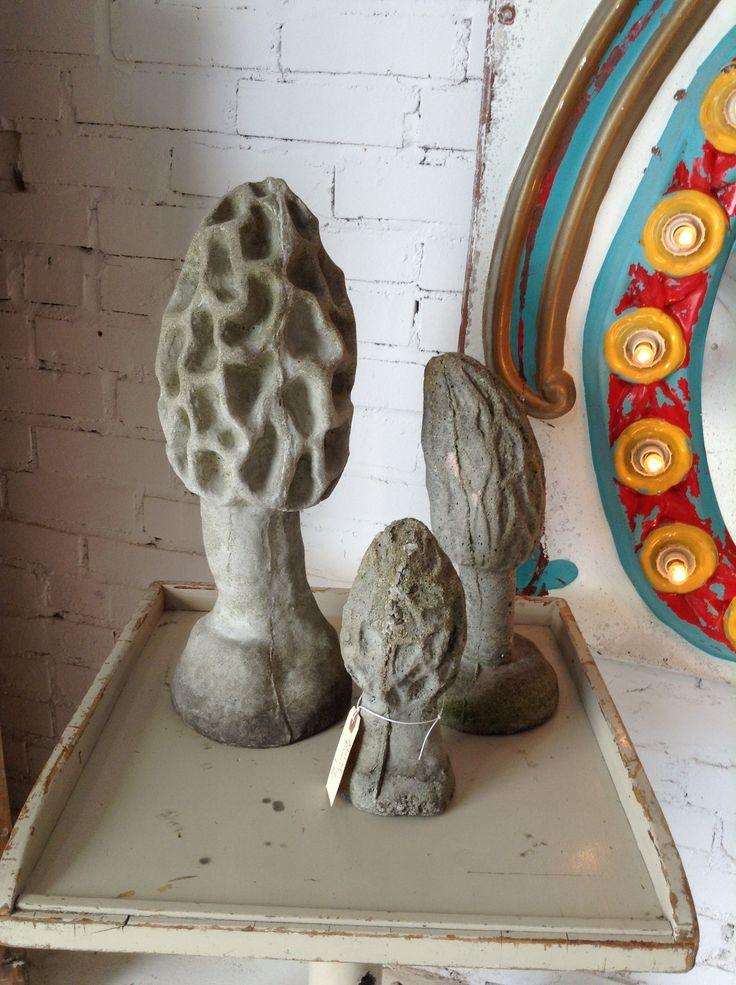 Images about morel mushroom crafts on pinterest