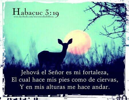 Jehova es mi fortaleza