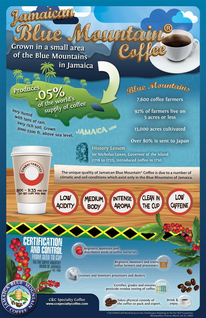 Why Jamaican Blue Mountain Coffee is Unique Infographic