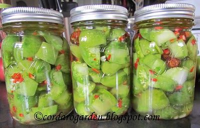 Italian Farmhouse Pickled Green Tomatoes (for green tomatoes @ end of season)