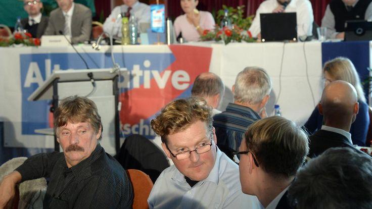 AfD soll Liste manipuliert haben: Juristen fordern Neuwahlen in Sachsen