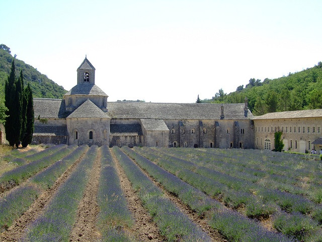 Abbaye Senanque in Provence