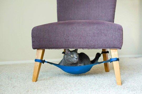 Cool cat bed/hammock!