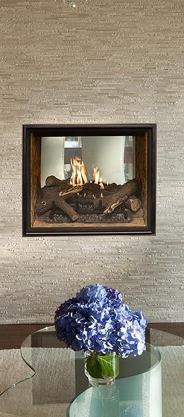 Gas fireplace inserts and Gas fireplaces
