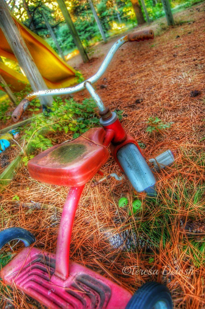 #Old #Tricycle 1 #Photograph