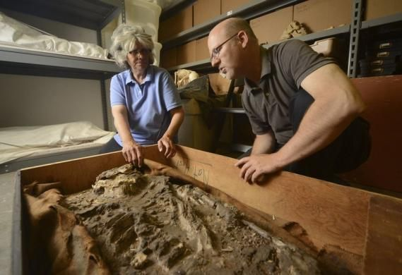 Pennsylvania museum says finds 6,500-year-old skeleton in its cellar | Reuters.com > Σπάνιος ανθρώπινος σκελετός 6.500 ετών (από την Ουρ της Μεσοποταμίας) παρατημένος για 85 χρόνια στα υπόγεια του Penn Museum της Philadelphia (Pennsylvania) στις Η.Π.Α.