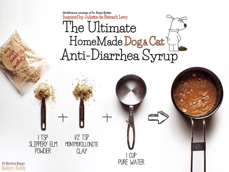 THE HOMEMADE DOG & CAT ANTI-DIARRHEA RECIPE Unfortunately, today's dogs and cats will suffer from diarrhea at some point in their lives. Whether they've consumed too many treats or got into the garbage, this super stressful and super messy bout of diarrhea can be a nightmare for both the pet and the owner! LOOKING FOR QUICK RESCUE RELIEF?
