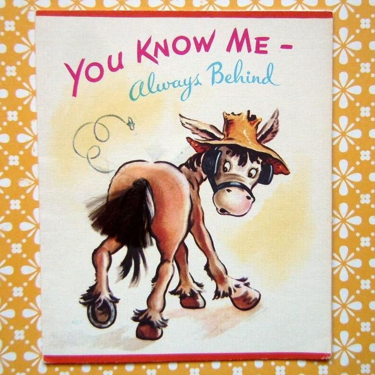 Vintage Birthday Greeting Card - Belated Birthday Card Funny Horse with Tail