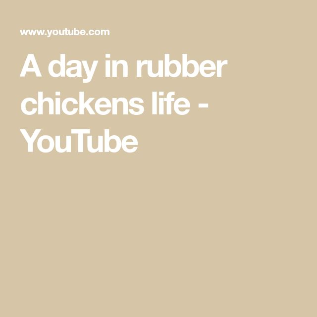 A day in rubber chickens life - YouTube