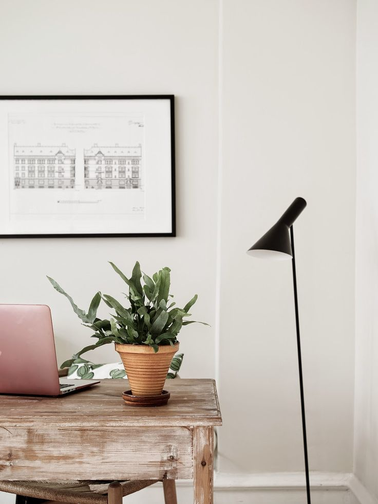 Houseplants and why we should decorate with them, plants, houseplants, Scandinavian interior design, Scandinavian home