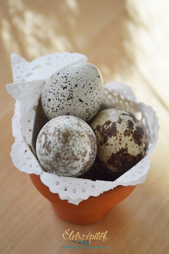 Húsvéti dekorötlet: díszítsünk fürjtojással! | Életszépítők