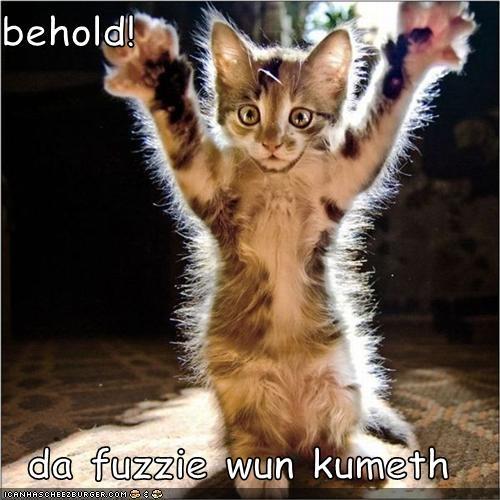 behold! da fuzzie wun kumeth