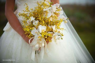 orquideas - chuva de ouro