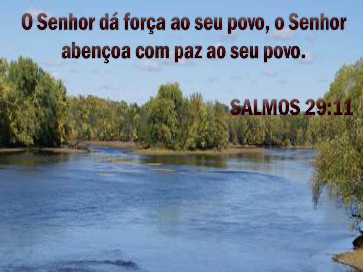 SALMO 29 Atribuam ao Senhor, ó seres celestiais, atribuam ao Senhor glória e força. Atribuam ao Senhor a glória que o seu nome merece; adorem o Senhor no esplendor do seu santuário. A voz do Senhor ressoa sobre as águas; o Deus da glória troveja, o Senhor troveja sobre as muitas águas. A voz do Senhor é poderosa; a voz do Senhor é majestosa. A voz do Senhor quebra os cedros; o Senhor despedaça os cedros do Líbano. Ele faz o Líbano saltar como bezerro,