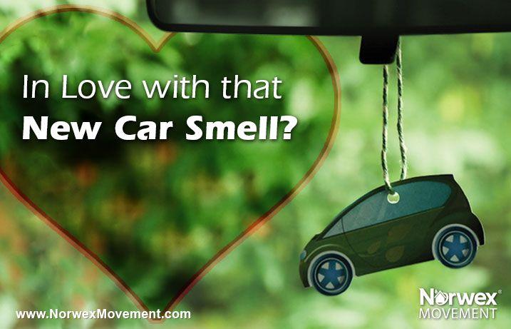 Best 25 New Car Smell Ideas On Pinterest Car Care Tips