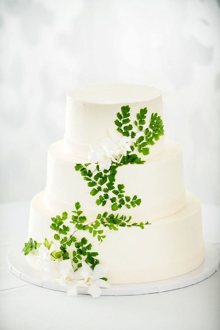 Simple White Wedding Cake Decorated With Maidenhair Fern Fern Wedding Romantic Wedding Cake Budget Wedding Cake