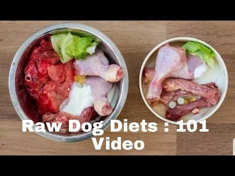 Raw Balanced Diet 101 : For Puppy's and Dog's  What most raw