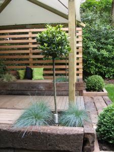 modern trädgårdsdesign