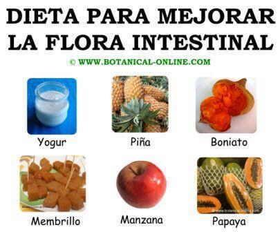 Dieta mejorar para la flora intestinal