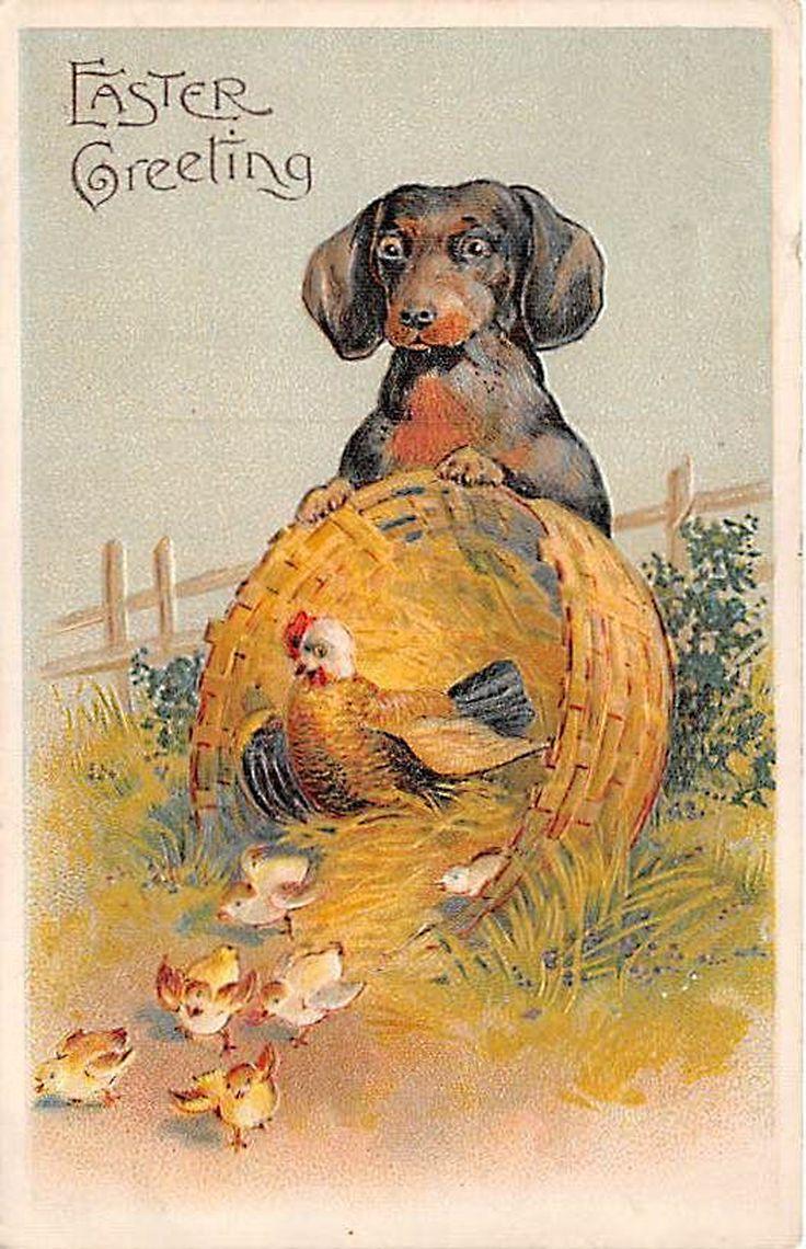 Vintage Dachshund - Easter
