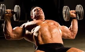 Pro Testosterone is the good supplement for males and this product helps to get muscles growth effectively.