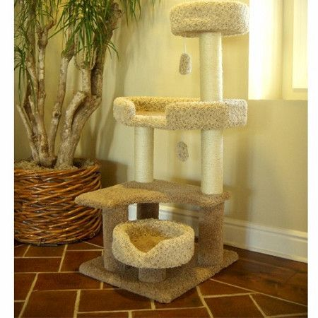 majestic 55 inch cat tree jungle gym - Cat Jungle Gym