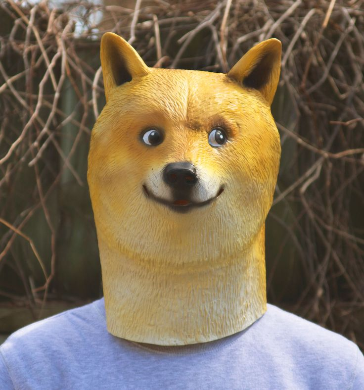 5c494934dcf68559f71e25a79d6f01fe meme costume doge 28 best doge images on pinterest doge, funny stuff and funny doge