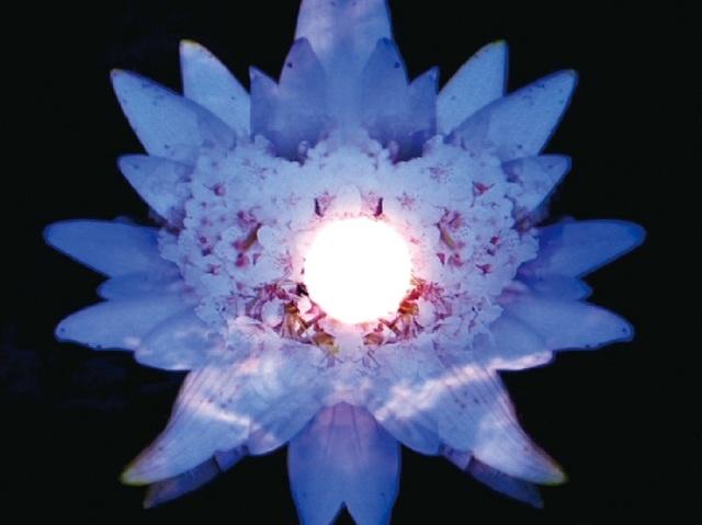 諏訪湖をイメージした心と体を癒すヒーリングアート「Mystic Lake」  (女性大浴場のみ)