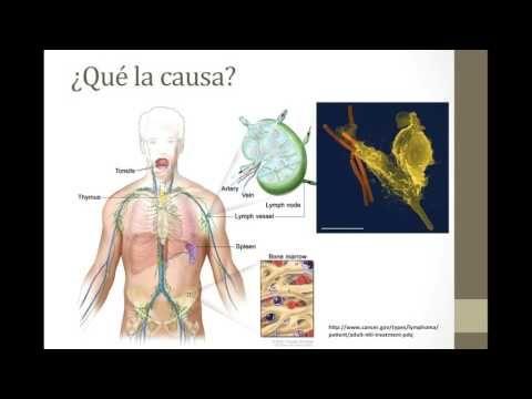 EMP ¿Qué es la Leucemia? - YouTube