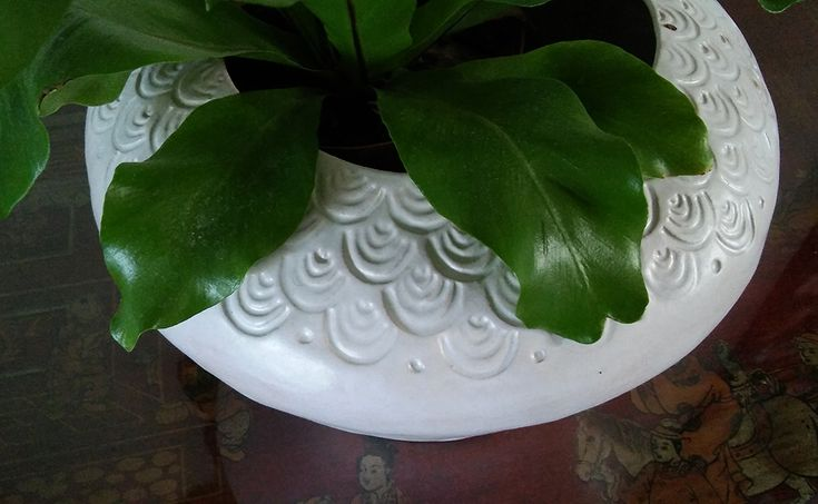 Round white pot with stamped pattern - Rowena Quinan