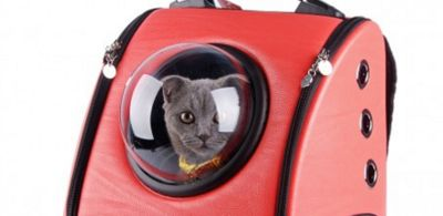 A Cat Backpack Will Never, Ever Leave You Lonely