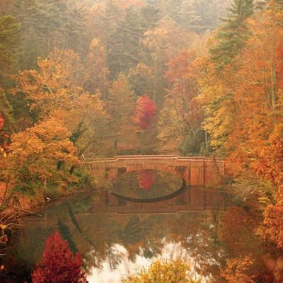 Fall in the Blue Ridge Mountains as seen from Biltmore House's bass pond.