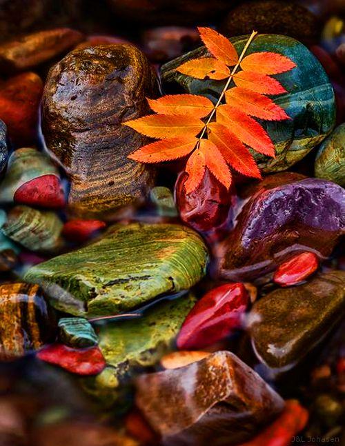 Autumn - color stones