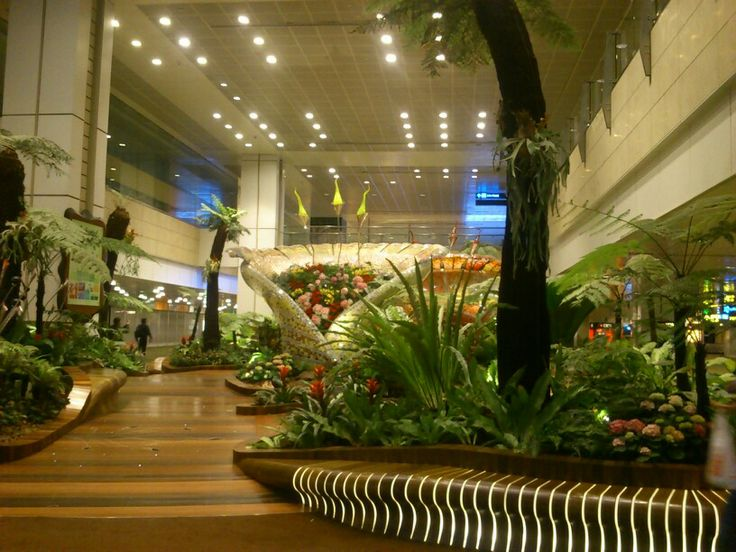 Inside of Changi Airport #SingaporeTrip