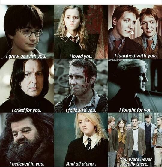 Pin by Natalie on Harry potter in 2019   Harry potter puns, Harry