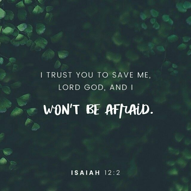God is my salvation, I will trust and not be afraid, for the Lord God is my strength and song. And He has become my salvation. Isaiah 12:2