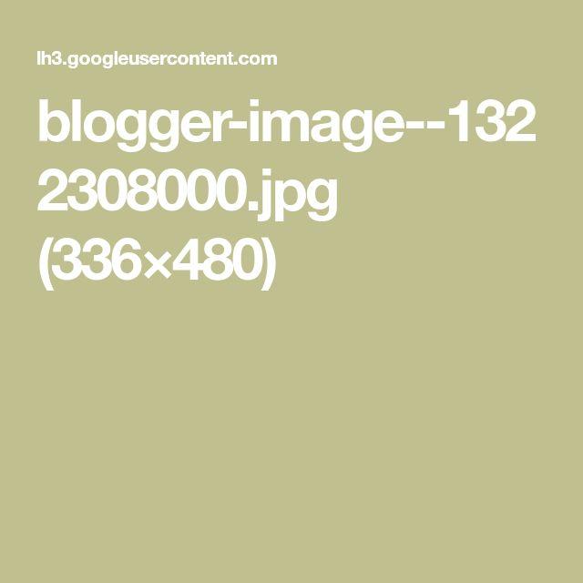 blogger-image--1322308000.jpg (336×480)