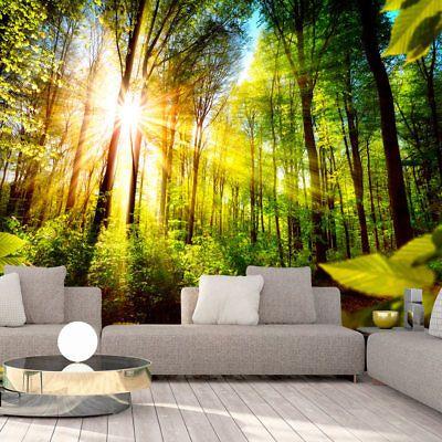 Die besten 25+ Wald tapete Ideen auf Pinterest Wald-Wandmalerei - wohnzimmer tapete grun