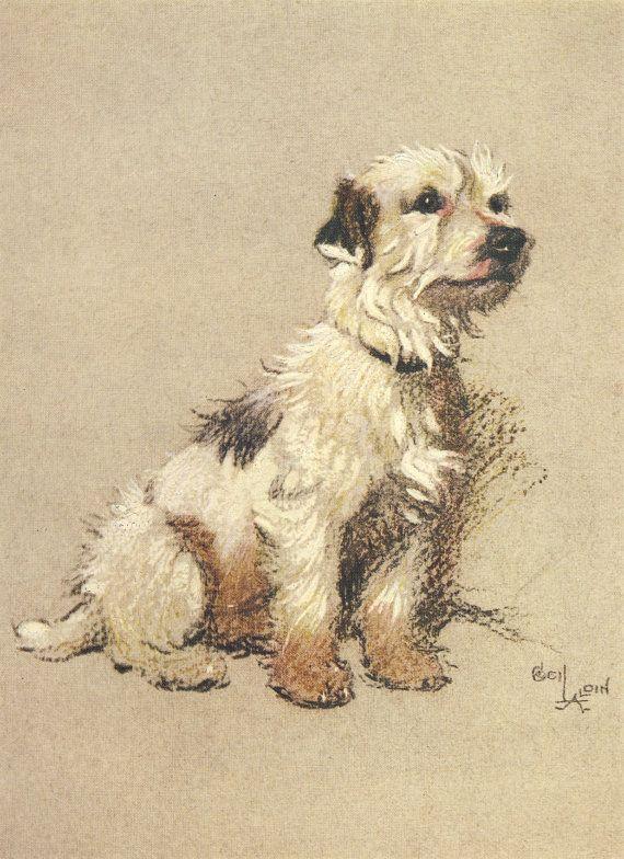 CECIL ALDIN A Dozen Dogs or So Illustration by TraderVintageMedia, $7.99