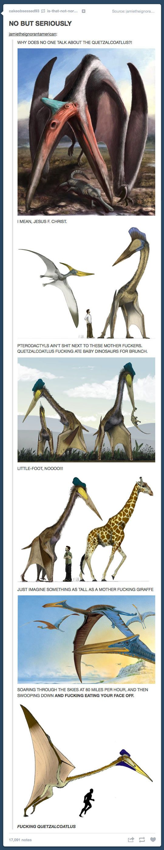 Why DOESN'T anyone talk about the Quetzalcoatlus…it's more terrifying than the Giant Golden-Crowned Flying Fox (look it up)