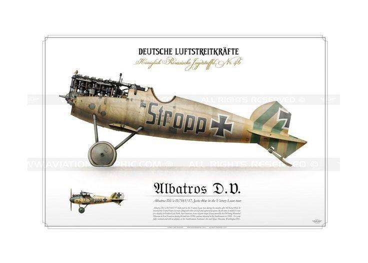 """Albatros D.V.a """"Stropp"""" 1918 BH-06"""