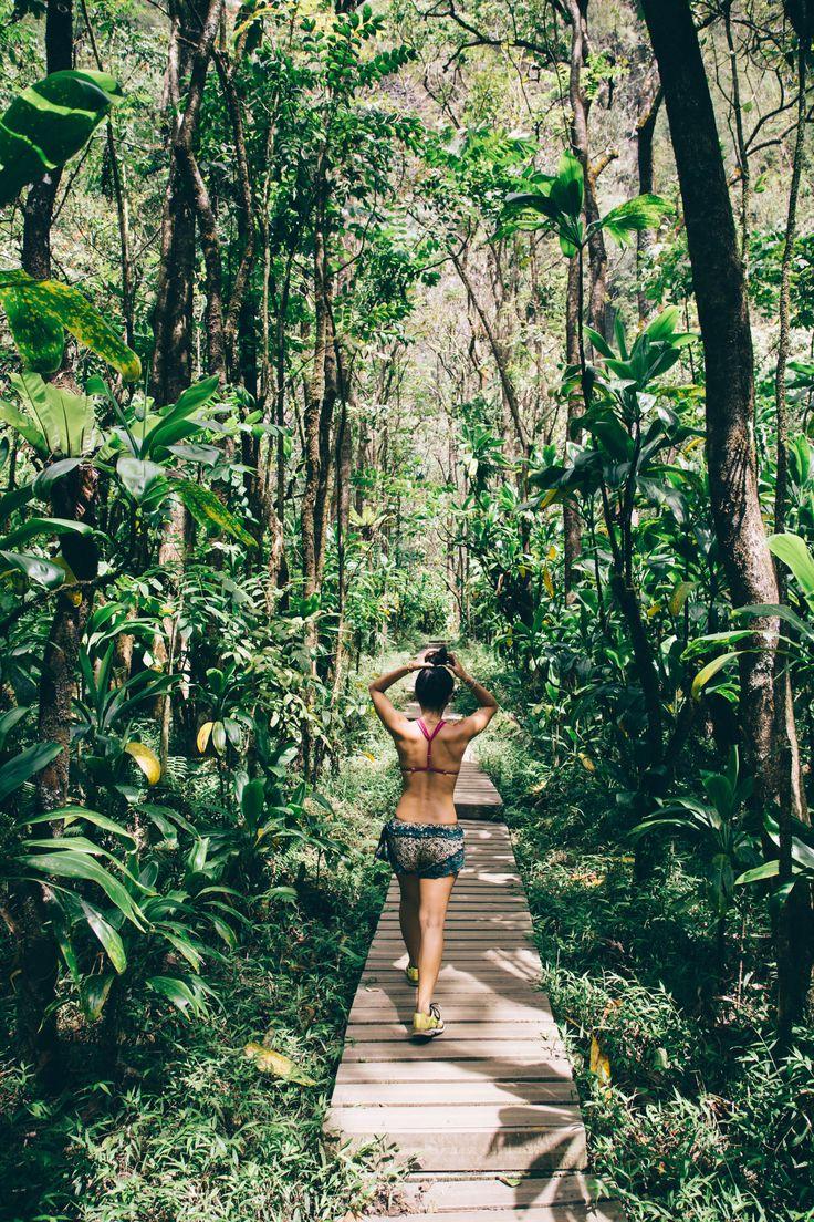 Pipiwai Trail Maui Hawaii (adjacent to seven sacred pools) - 4 miles round trip leading to 400 ft. Waimoku Falls
