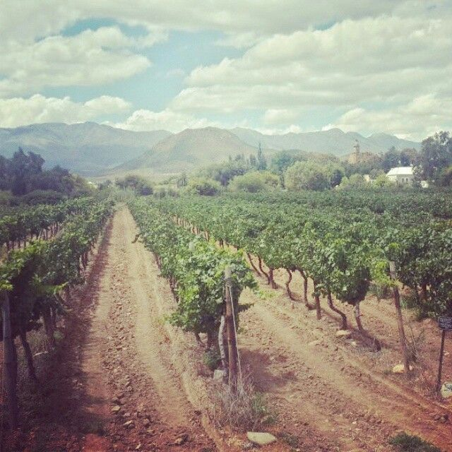 Boland Wines Calitzdorp