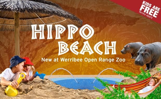 The best beach in town opens for the first time this summer at Werribee Open Range Zoo! Watch our hippos as they snooze on the bank and splash through the water, then hit the relax button and find a deck chair to enjoy or swing with the summer breeze in a comfy hammock.