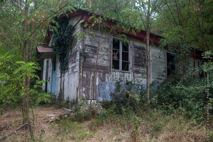 #AbandonedOrphanageZiropolis #AbandonedOrphanage #abandonedoldschool #abandoned #abandonedplaces #decay #abandonedgreece #abandonedworld #forgottenplaces #exploration #abandonedphotography #photography #mygreece #mytravel #kalpenidouphotography #LakeZiros #ziropolis #filippiada #greece #εγκαταλειμμένηΕλλάδα #ελλάδα #εγκαταλειψη #Ζηρόπολη #ΛίμνηΖηρού #ΠαιδόποληΆγιοςΑλέξανδρος