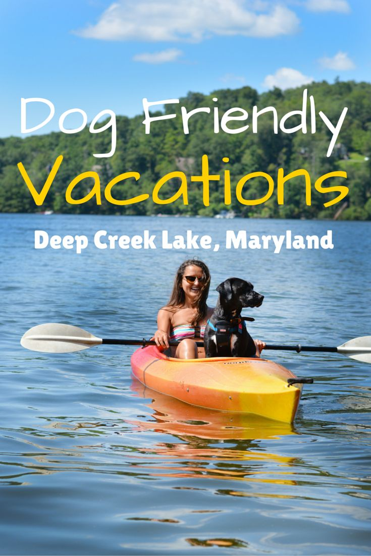 Your dog deserves a vacation too!  Browse dog friendly vacation rentals at Deep Creek Lake.  You can hike, kayak, swim, and relax with your four-legged friend.