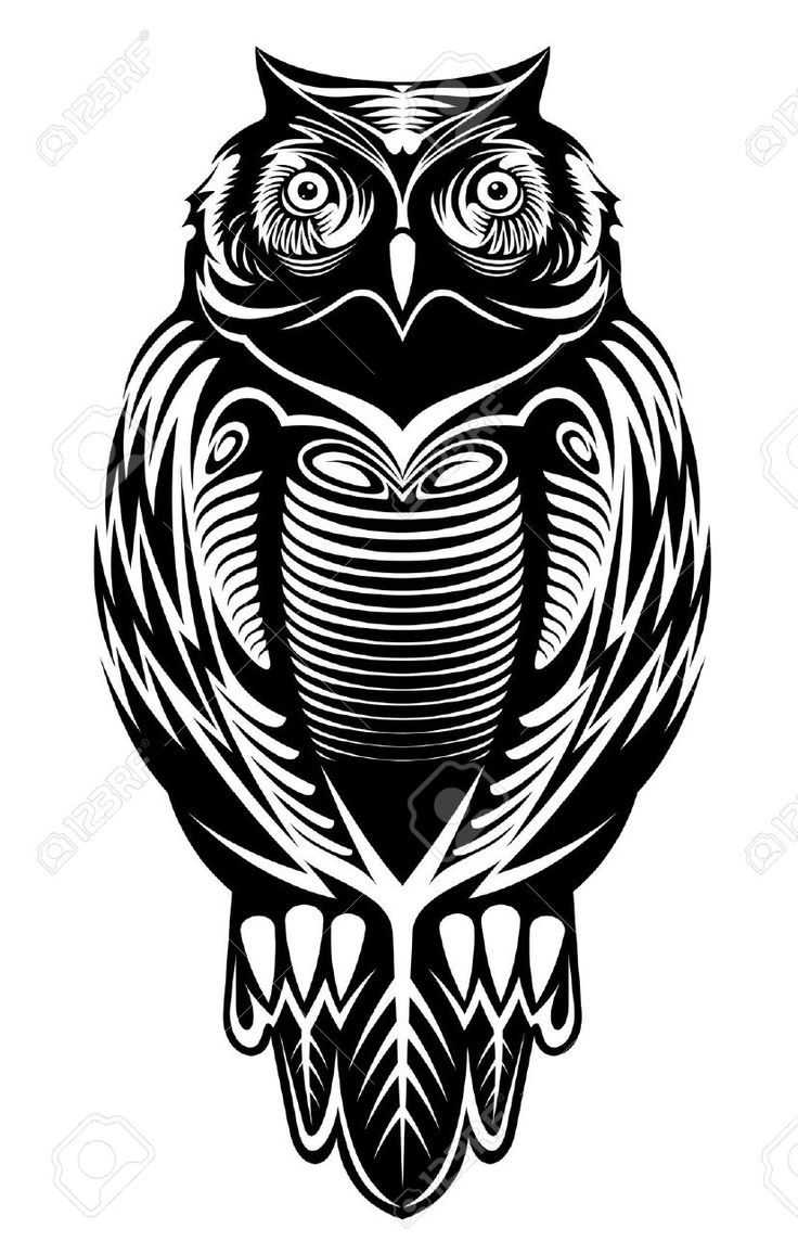 How to breed heraldic dragon - Image Result For Heraldic Owl